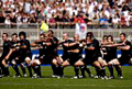 WWW.REGARDS DU SPORT-VANDYSTADT.COM Photos hakade nouvelle zélande all black rugby