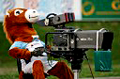 WWW.REGARDS DU SPORT-VANDYSTADT.COM Photos camera cameraman match rugby