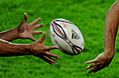 WWW.REGARDS DU SPORT-VANDYSTADT.COM Photos Top 14 Passe Rugby